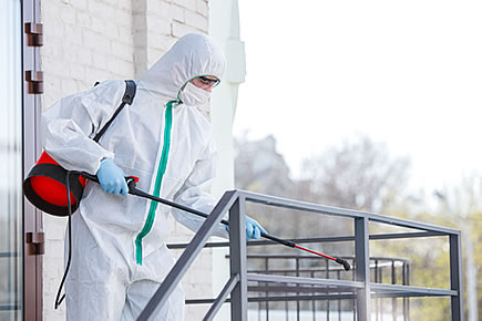Desinfecciones y limpiezas especiales en Navarra